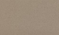 REVIVE 1 / Farbe 224 Beige